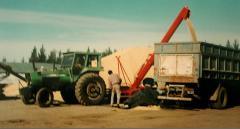 Extractora de Grano