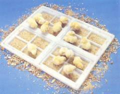 Avicultura - Cajas para Pollos