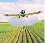 Productos para el Agro - Pesticidas Inseciticidas