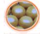Jugo concentrado de Pomelo Rosado 60ºBrix