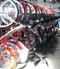 Bicicletas Especiales