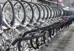 Bicicletas de Adultos