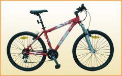 Bicicleta modelo X-10