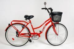 Bicicleta modelo 05