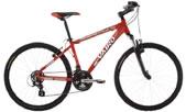 Bicicleta modelo 01