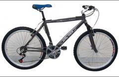 Bicicleta modelo 11