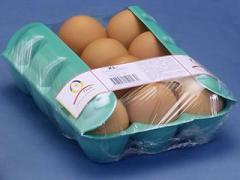 Estuche p/huevos 12 un