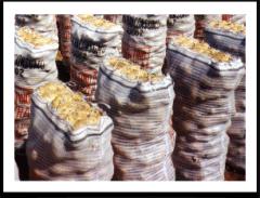 Bolsas para Envasar Cereales