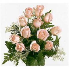 Rosas en rama