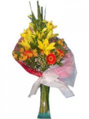 Lilium flores