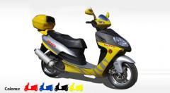 Motos Scooter - Winstar 150