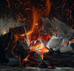 Carbón de Leña de la Argentina