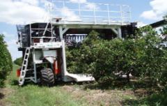 Colossus Florida- cosechadoras