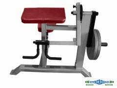 Máquinas para Biceps y Triceps a Discos