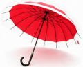 Paraguas 16 gajos