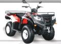 Cuatrciclo FR 250