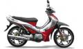 Motocicleta Business