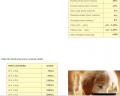 Papilla para perros en período de destete (3 a 8 semanas)