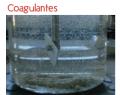 Coagulantes