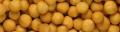 Gastronomía - Farm Frites Noisettes