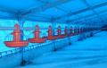 Industria Avícola - Líneas de Abastecimiento