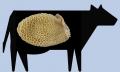 Carne vacuna Bonete