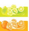 Citrus Del Sudeste Bonaerense