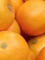 Jugos Concentrados Congelados - Mandarina