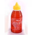 Miel Pote PVC con pico vertedor x 480 Grs.