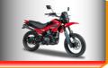 Motocicleta Enduro  Triax Motard