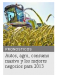 Autos, agro, consumo masivo y los mejores negocios para 2013
