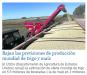 Bajan las previsiones de producción mundial de trigo y maíz