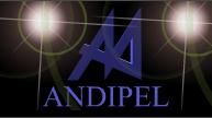 Andipel, Empresa, Mendoza