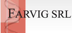 FARVIG, S.R.L., Buenos Aires
