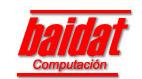 Baidat Computación, Empresa, Buenos Aires