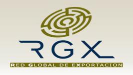 RGX Red Global de Exportación, Empresa,