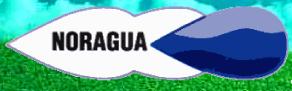 Noragua, Empresa, Pilar