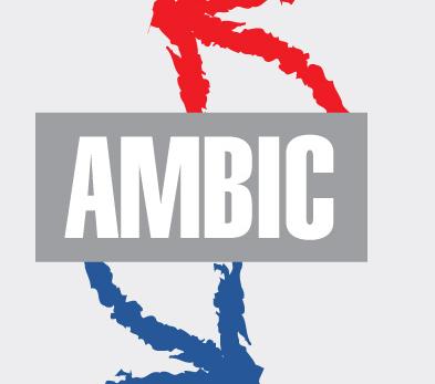 Ambic, Empresa, Buenos Aires