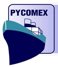 Pycomex, Empresa, Buenos Aires