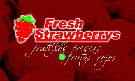 Frutillas Frescas, Empresa,