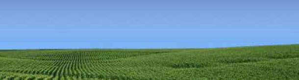 Pedido Ensayos - Red Nacional de Evaluación de Cultivares de Soja