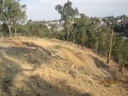 Pedido Estudio previo y prepación del terreno