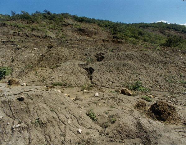Pedido Investigaciones de geología