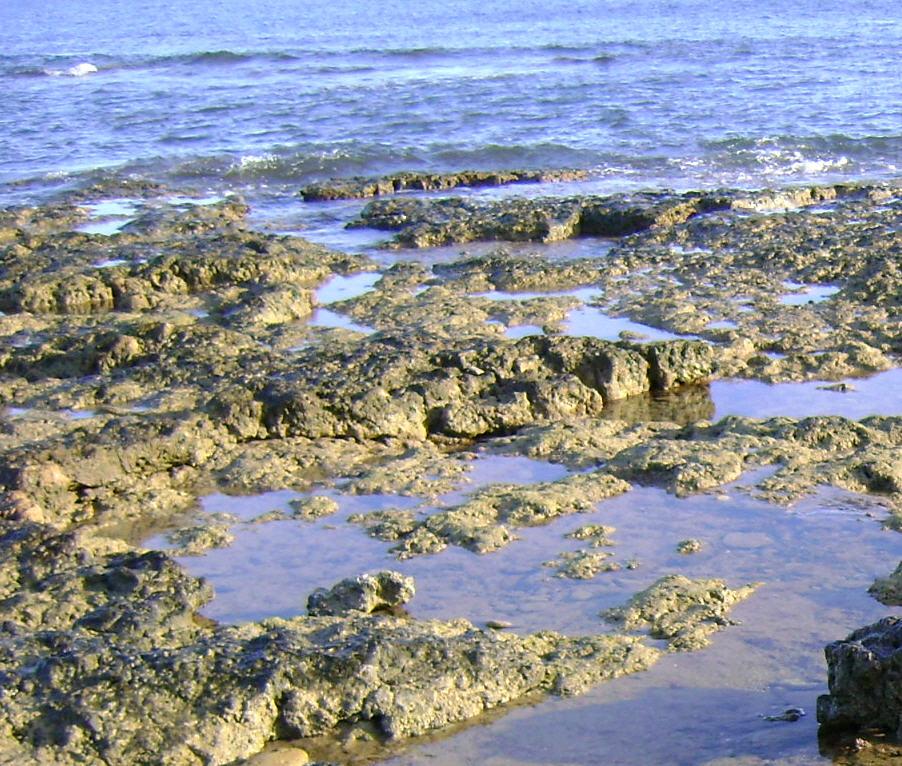 Pedido Estudios Hidrogeológicos