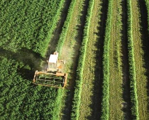 Pedido Asesoramiento agrario