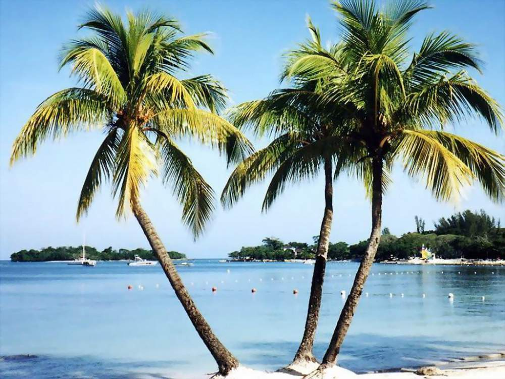 Pedido Tour Caribe