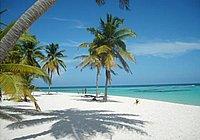 Pedido Tour Punta Cana