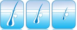 Pedido Tratamiento cabello - Comprimidos