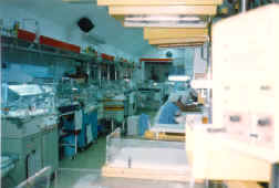 Architecture - Building site: Neonatologie Room