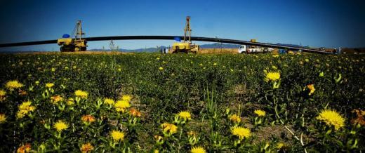 Pedido Ampliación Gasoductos